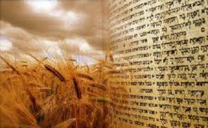 Shavu'ot Service @ Adat Shalom